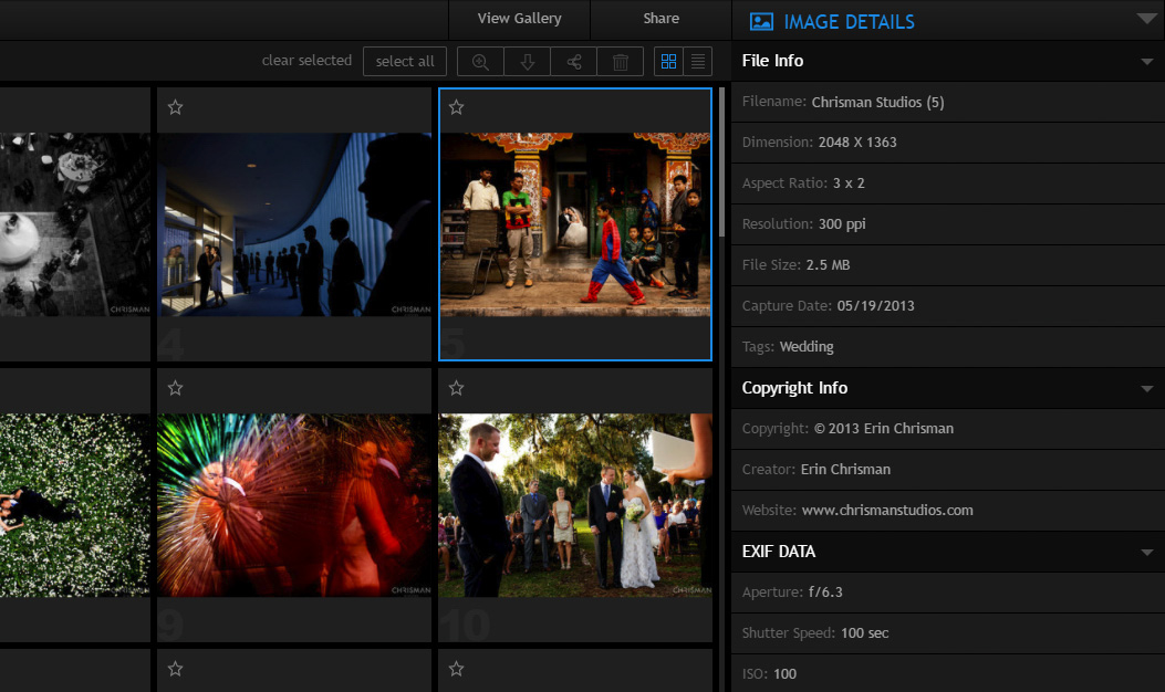pixrit online photo gallery and social media manager for photographers