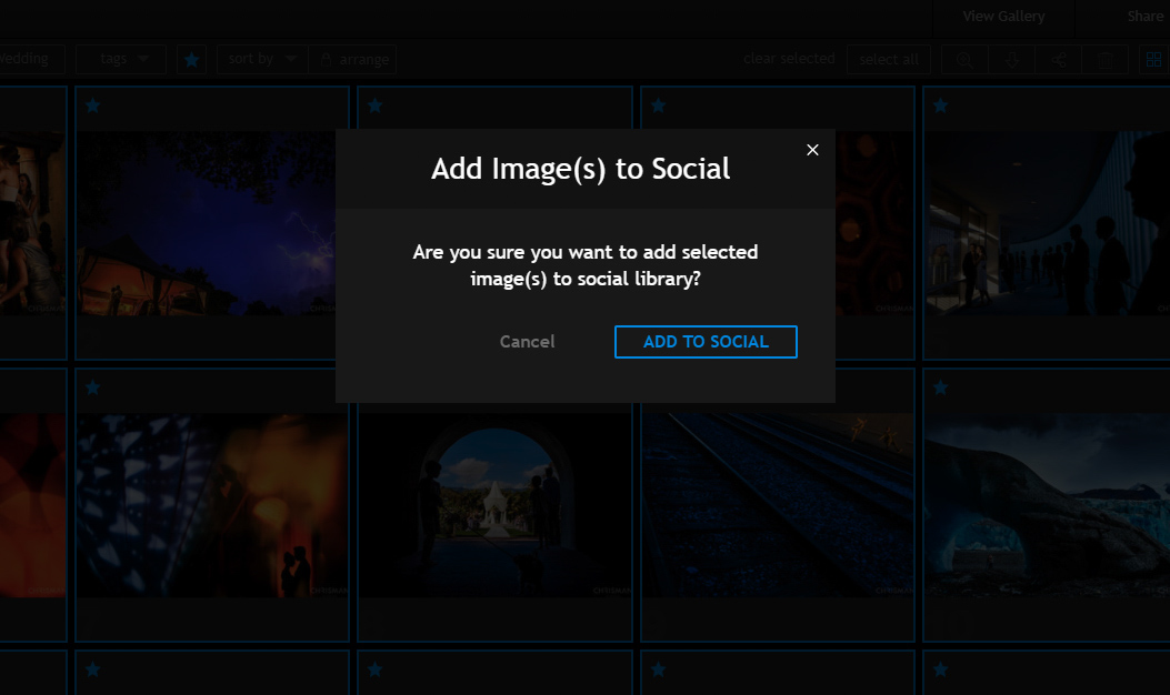 pixrit built in presentation galleries combined with the fastest social media scheduler for sharing images